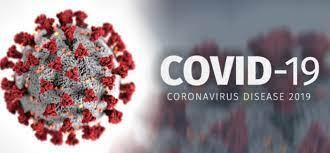 Berbagai Vaksin Dibuat Untuk Bisa Memerangi Infeksi Dan Pertahanan